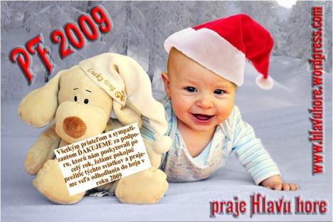 pf2008_kopie